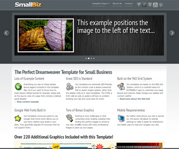 SmallBiz Dreamweaver Template